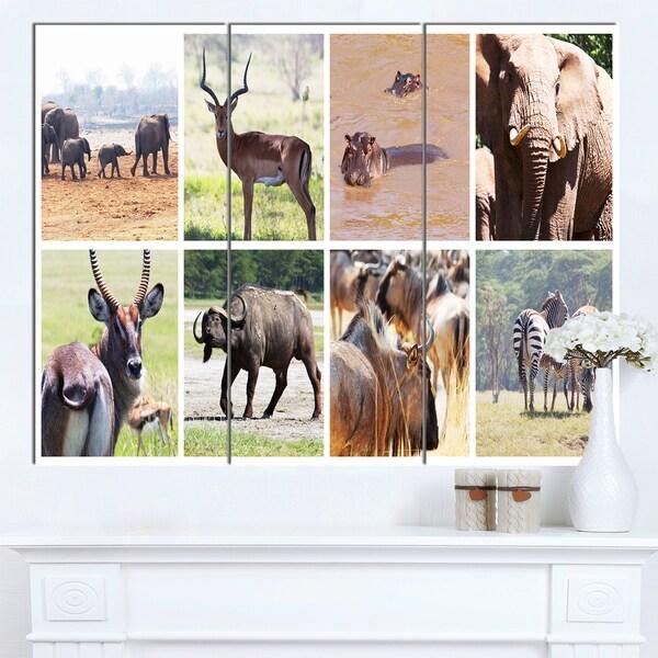 Designart 'Rich African Wildlife Collage' Animal Canvas Artwork