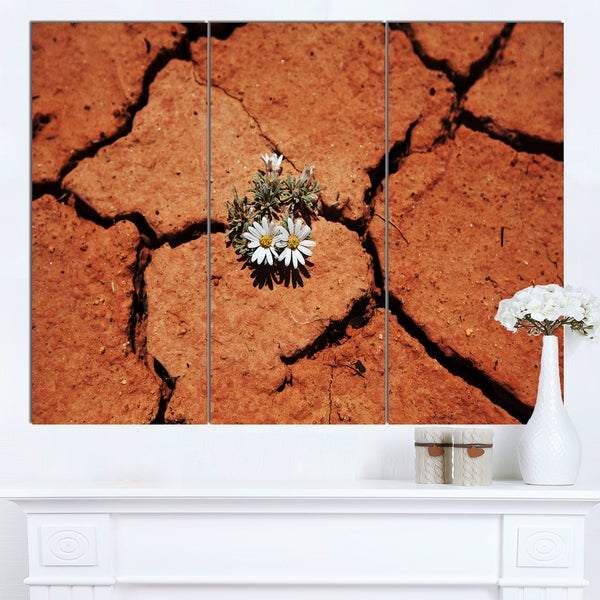 Designart 'Surviving Flowers on Drought Land' Extra Large Landscape Canvas Art