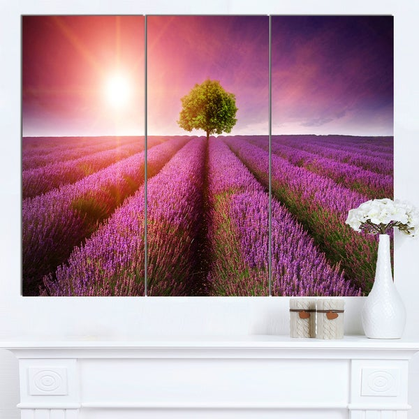 Designart 'Purple Sky over Stunning Lavender Field' Large Floral Canvas Art Print