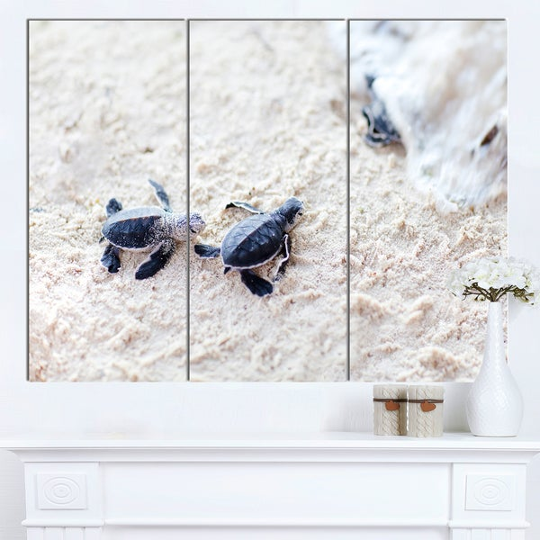 Designart 'Baby Green Turtles on Sand' Oversized Animal Wall Art