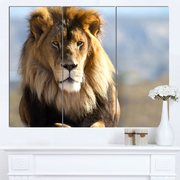 Designart 'Fierce Face of King of the Wild' African Canvas Artwork