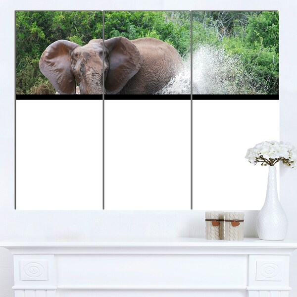 Designart 'Elephant Spraying Water' African Wall Art Canvas Print