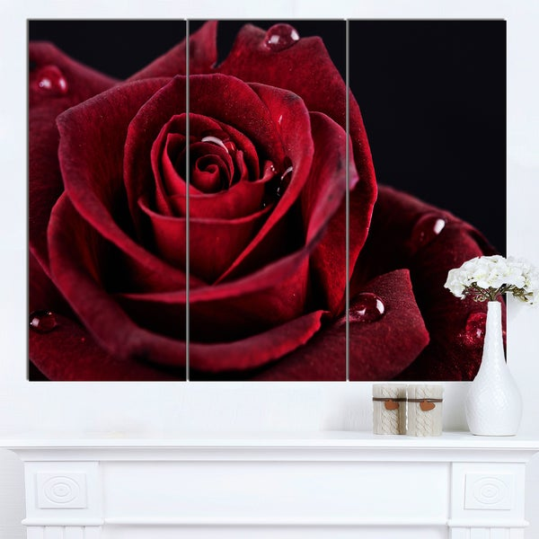 Designart 'Red Rose with Raindrops on Black' Flowers Canvas Wall Artwork