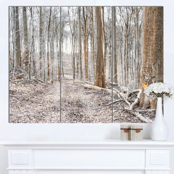 Designart 'Dense Forest in the Winter Photography' Modern Forest Canvas Art