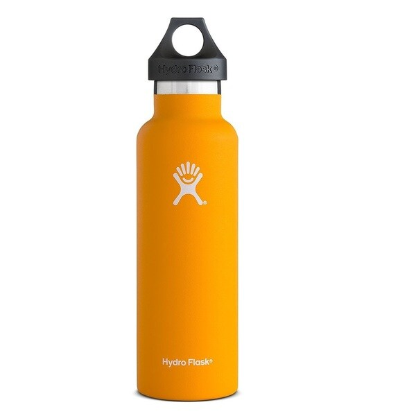 Standard Mouth Stainless Steel Water Bottle 22413000