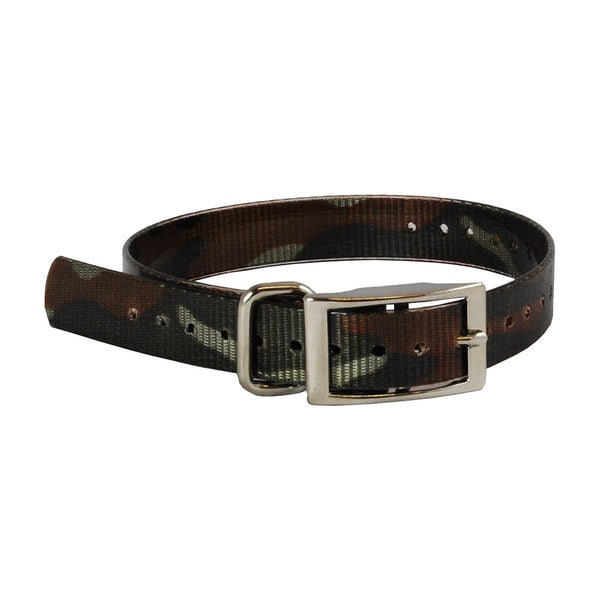 The Buzzard's Roost Dog Collar 1 inch Strap