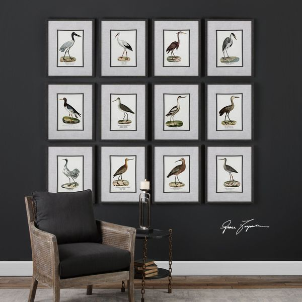 Uttermost Seashore Birds Prints (Set of 12)