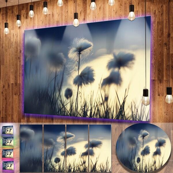Designart 'Arctic Blooming Cotton Flowers' Large Flower Metal Wall Art 22559178