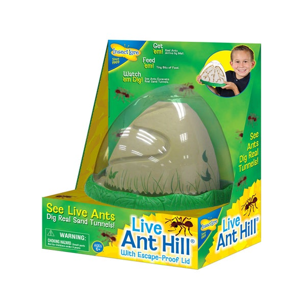 INSECT LORE AntHill Living Ant Habitat