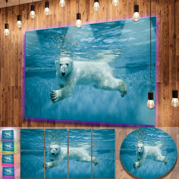Designart 'Polar Bear Swimming under Water' Large Animal Metal Wall Art