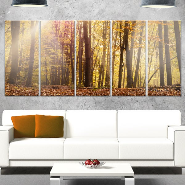 Designart 'Dense Forest in Rays of Rising Sun' Large Forest Glossy Metal Wall Art 23166686