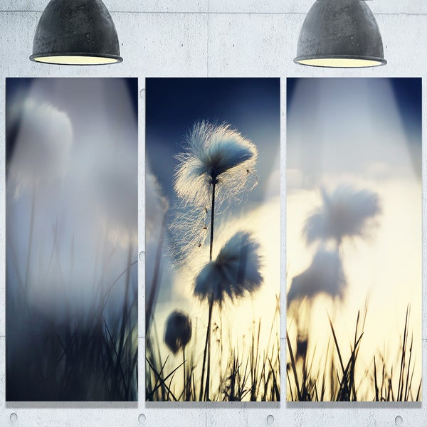 Designart 'Arctic Blooming Cotton Flowers' Large Flower Glossy Metal Wall Art 23542444