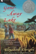 Gone-Away Lake (Paperback)