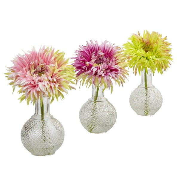 Daisy with Glass Vase (Pack of 3) 23780742