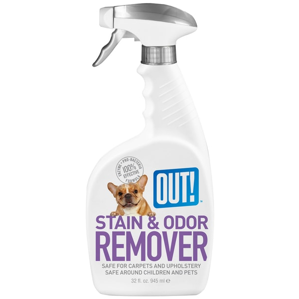 Out 32 Oz Pet Stain & Odor Remover 25016475