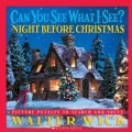 Can You See What I See? The Night Before Christmas: Night Before Christmas (Hardcover)