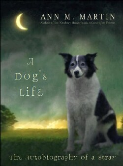 A Dog's Life: The Autobiography Of A Stray (Hardcover)