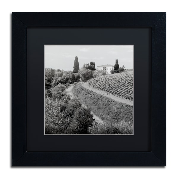 Alan Blaustein 'Tuscany V' Matted Framed Art 25363687