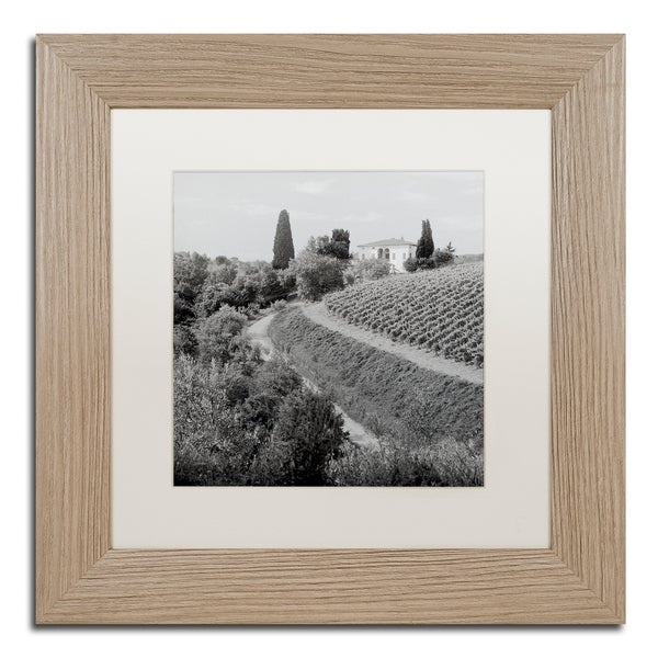 Alan Blaustein 'Tuscany V' Matted Framed Art 25363735