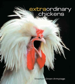 Extraordinary Chickens (Hardcover)