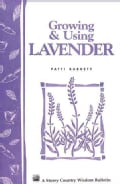 Growing and Using Lavender (Paperback)