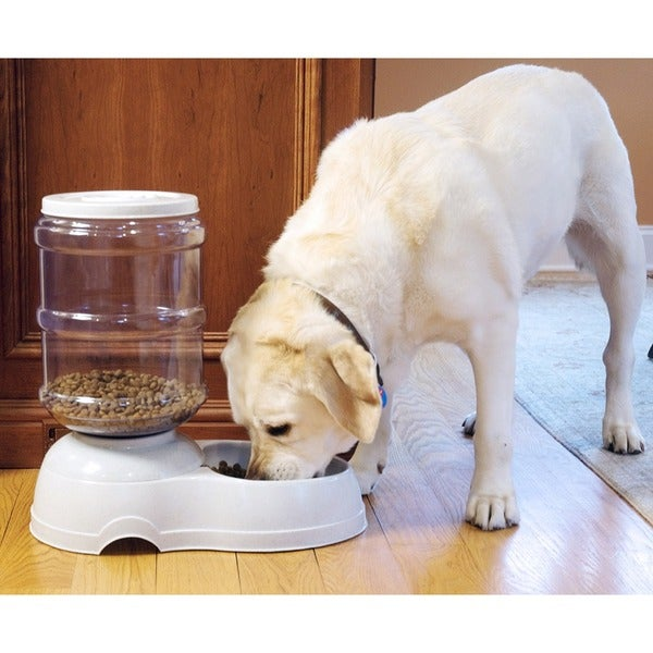 SpeedoFeedo 11 Liter Pet Food Feeder 25897096