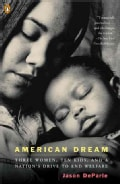 American Dream: Three Women, Ten Kids, And A Nation's Drive to End Welfare (Paperback)