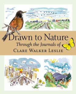 Drawn to Nature Through the Journals of Clare Walker Leslie (Paperback)