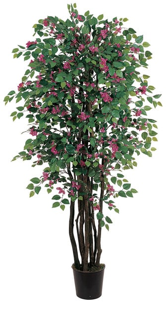 Bougainvillea 6-foot Silk Tree