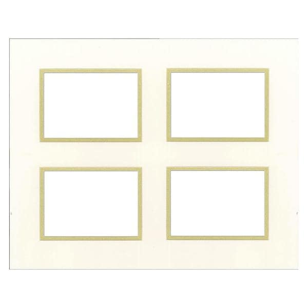 Accent Design Specialty White/Gold-tone Double-layer Framing Mats 26921331
