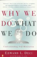 Why We Do What We Do: Understanding Self-Motivation (Paperback)