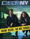 CSI: NY: The Complete First Season (DVD)