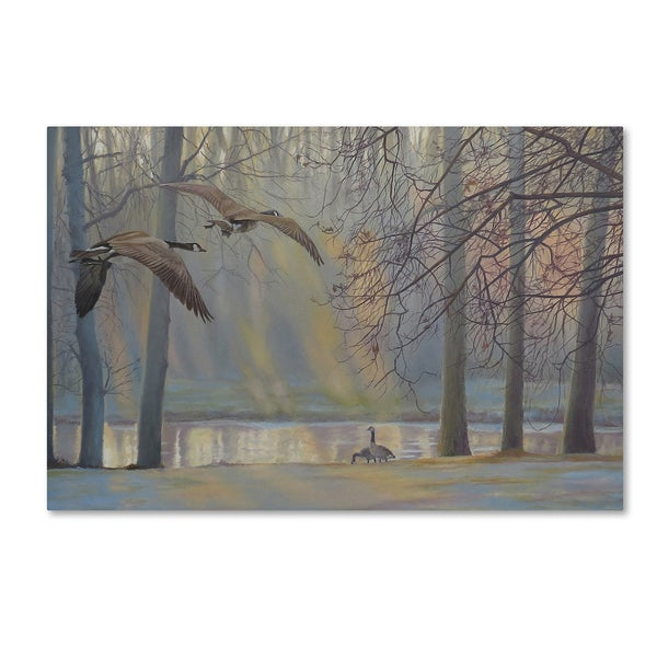 Rusty Frentner 'Geese An Pond' Canvas Art 27038781