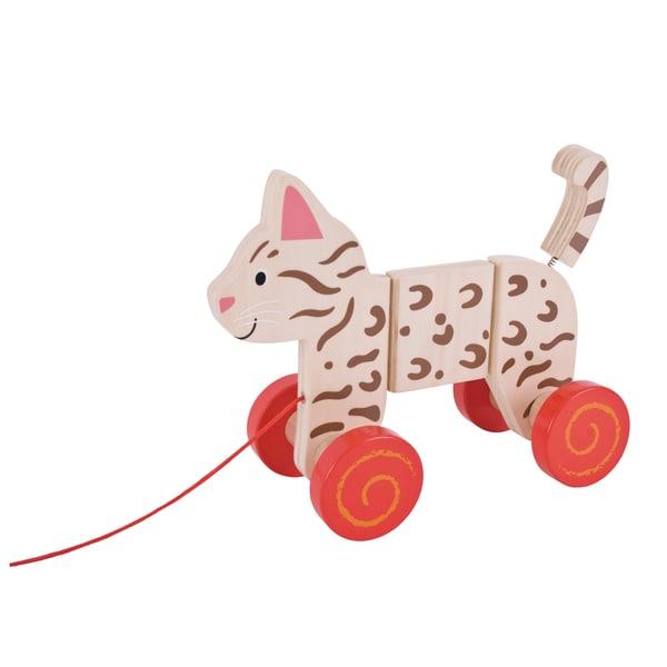 Bigjigs Toys Pull Along Cat 27098639