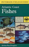 A Field Guide to Atlantic Coast Fishes: North America (Paperback)
