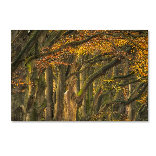 Approve Autumn  'Approve Autumn ' Canvas Art 27817132