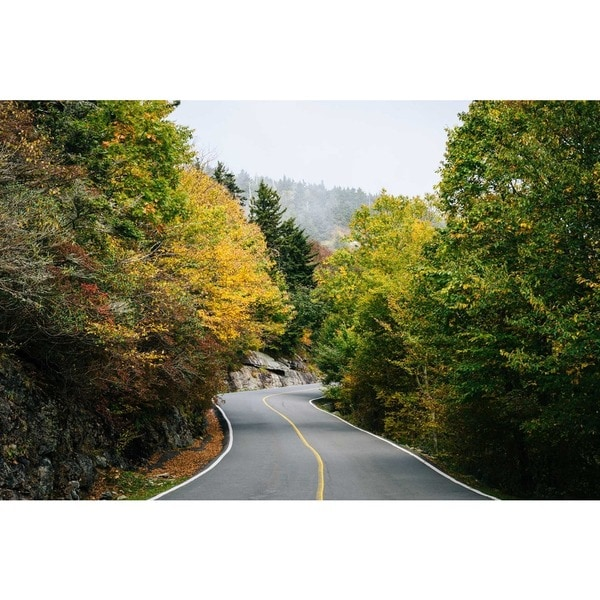 Noir Gallery Fall Color on a Road in Western North Carolina Photo Print on Metal. 28320222