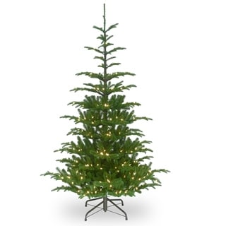 7.5 ft. Norwegian Spruce Tree with Clear Lights - 7.5'