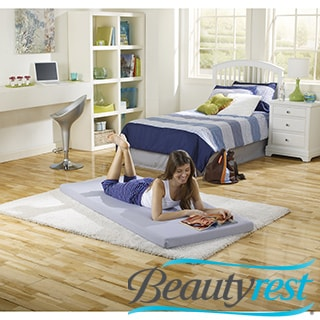 Simmons Beautysleep Great Rest Roll Up Twin-size Memory Foam Bed