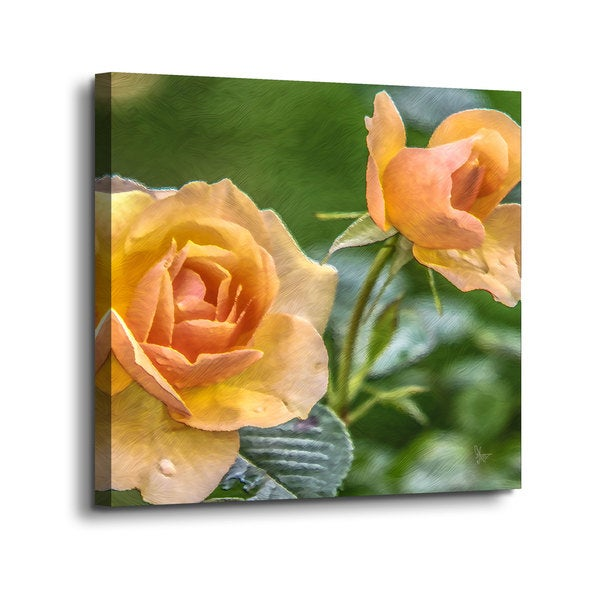 Scott Medwetz 'Suns Love in the Spring' Gallery-wrapped Canvas 29126793