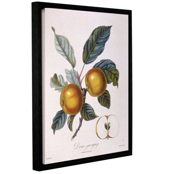 Pierre Jean Francois Pturpin 'Apple Doux-Juvigny' Gallery-wrapped Floater-framed Canvas 29128789