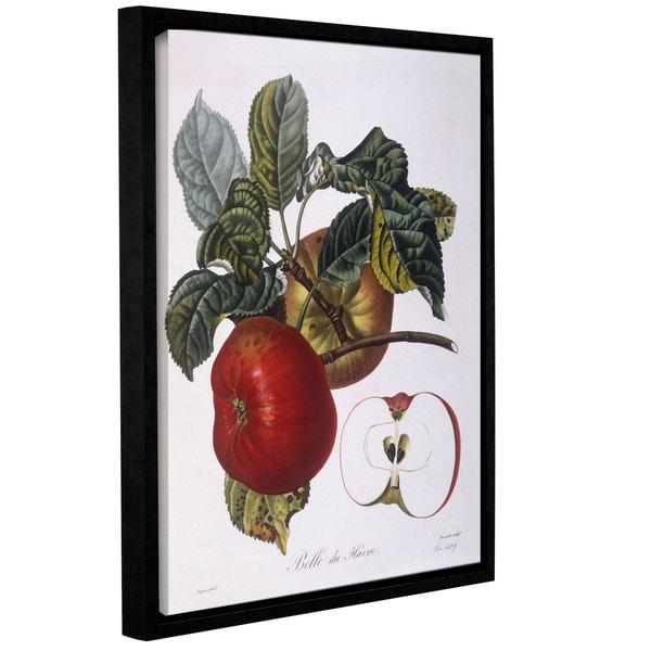 Pierre Jean Francois Pturpin's 'Apple Belle Du Havre' Gallery-wrapped Floater-framed Canvas 29128852