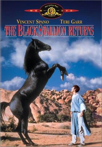 Black Stallion Returns (DVD)