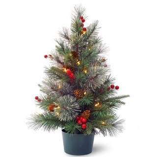 National Tree Company 2' Colonial Potted Christmas Tree with Battery Operated Warm White LED Lights