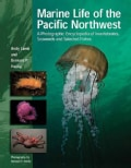 Marine Life of the Pacific Northwest: A Photographic Encyclopedia of Invertibrates, Seaweeds And Selected Fishes (Hardcover)