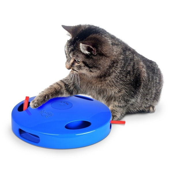 OurPets Tailspin & Chase Cat Toy 29878063