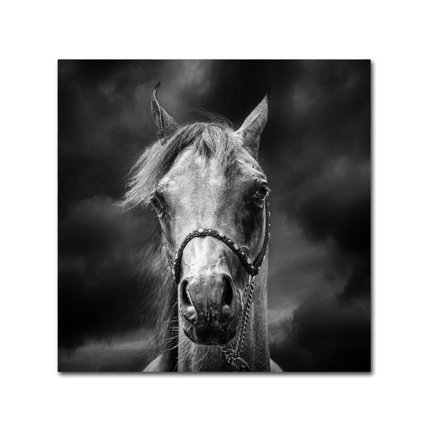 Piet Flour 'Head In The Clouds' Canvas Art 30092193