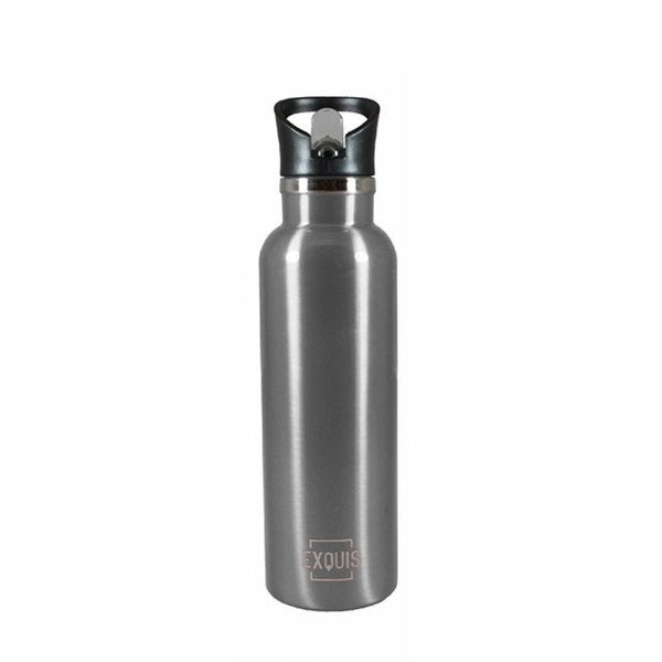Stainless Steel Bottle w/ Straw - 17oz 30171008