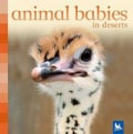 Animal Babies in Deserts (Board book)