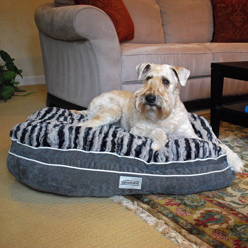 Beautyrest Luxe Mat Plus Oval Orthopedic Memory Foam Dog Bed
